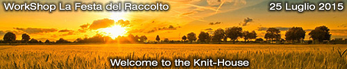 WorkShop La Festa del Raccolto : Welcome to the Knit-House